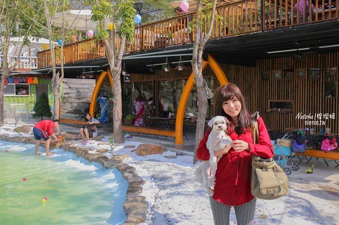 寵物餐廳│寵物游泳│台南關廟美食│森呼吸 Jorona Park~充滿彩色球的寵物專屬游泳池及露天咖啡廳01