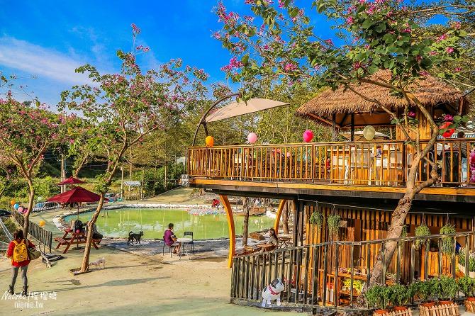 寵物餐廳│寵物游泳│台南關廟美食│森呼吸 Jorona Park~充滿彩色球的寵物專屬游泳池及露天咖啡廳102
