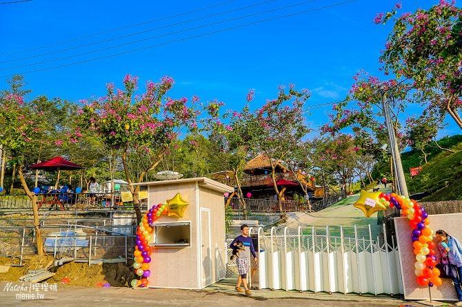 寵物餐廳│寵物游泳│台南關廟美食│森呼吸 Jorona Park~充滿彩色球的寵物專屬游泳池及露天咖啡廳105