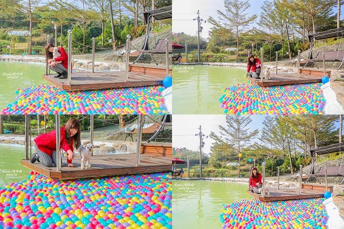 寵物餐廳│寵物游泳│台南關廟美食│森呼吸 Jorona Park~充滿彩色球的寵物專屬游泳池及露天咖啡廳121