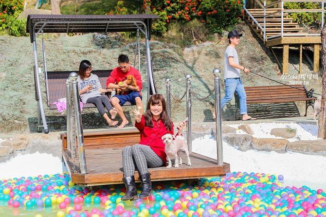 寵物餐廳│寵物游泳│台南關廟美食│森呼吸 Jorona Park~充滿彩色球的寵物專屬游泳池及露天咖啡廳16