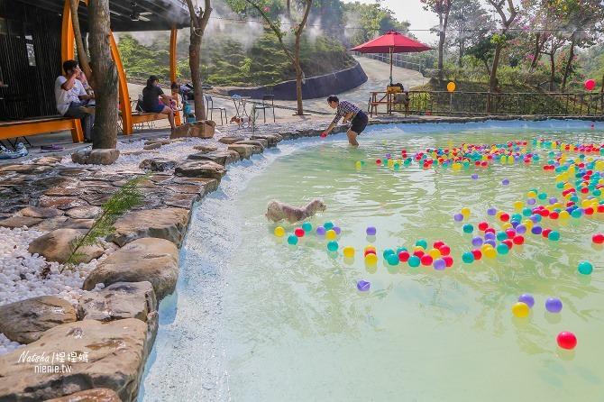 寵物餐廳│寵物游泳│台南關廟美食│森呼吸 Jorona Park~充滿彩色球的寵物專屬游泳池及露天咖啡廳26