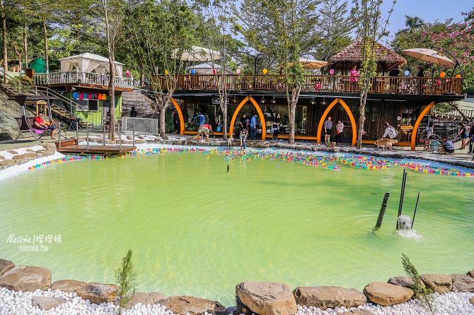 寵物餐廳│寵物游泳│台南關廟美食│森呼吸 Jorona Park~充滿彩色球的寵物專屬游泳池及露天咖啡廳38