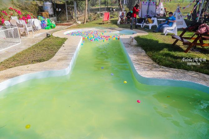 寵物餐廳│寵物游泳│台南關廟美食│森呼吸 Jorona Park~充滿彩色球的寵物專屬游泳池及露天咖啡廳49
