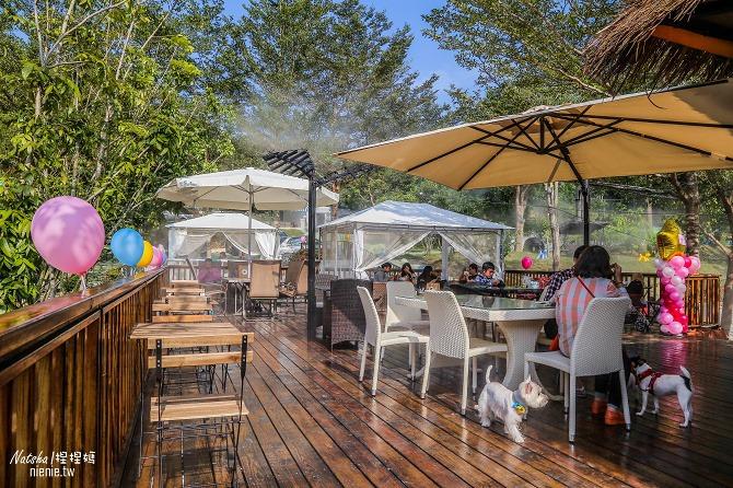 寵物餐廳│寵物游泳│台南關廟美食│森呼吸 Jorona Park~充滿彩色球的寵物專屬游泳池及露天咖啡廳63