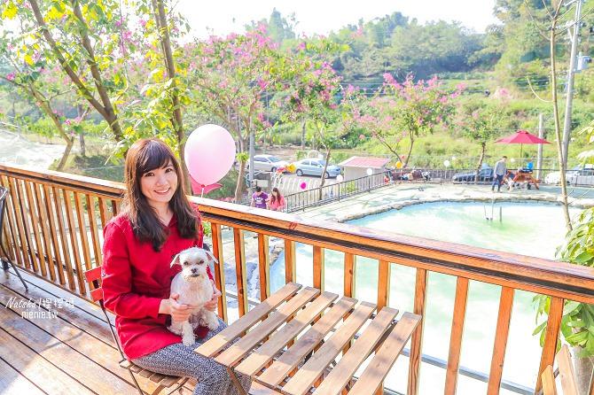 寵物餐廳│寵物游泳│台南關廟美食│森呼吸 Jorona Park~充滿彩色球的寵物專屬游泳池及露天咖啡廳65