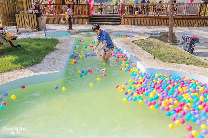 寵物餐廳│寵物游泳│台南關廟美食│森呼吸 Jorona Park~充滿彩色球的寵物專屬游泳池及露天咖啡廳71