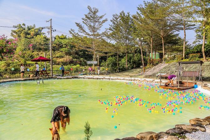 寵物餐廳│寵物游泳│台南關廟美食│森呼吸 Jorona Park~充滿彩色球的寵物專屬游泳池及露天咖啡廳81