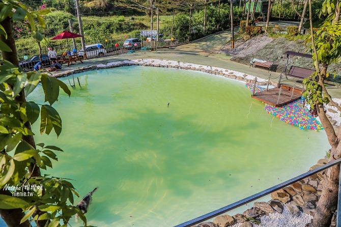 寵物餐廳│寵物游泳│台南關廟美食│森呼吸 Jorona Park~充滿彩色球的寵物專屬游泳池及露天咖啡廳89