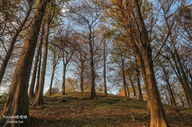 宜蘭景點推薦│羅東運動公園~一年四季都能看到不同的美景 (內有打完Sculptra舒顏萃聚左旋乳酸一個半月後的成果)31