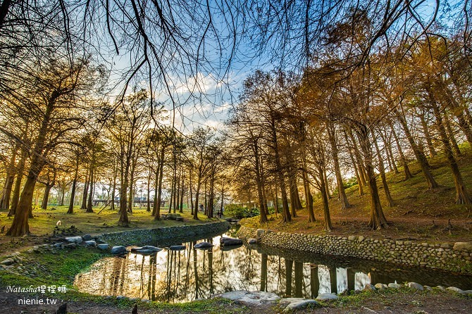 宜蘭景點推薦│羅東運動公園~一年四季都能看到不同的美景 (內有打完Sculptra舒顏萃聚左旋乳酸一個半月後的成果)38