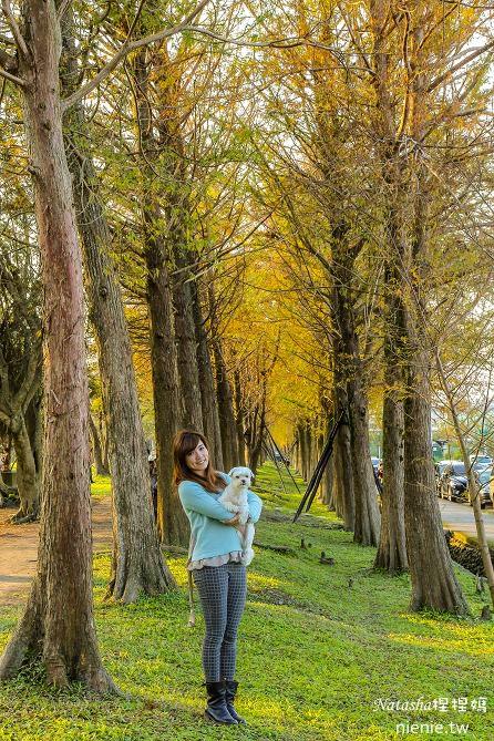 宜蘭景點推薦│羅東運動公園~一年四季都能看到不同的美景 (內有打完Sculptra舒顏萃聚左旋乳酸一個半月後的成果)41