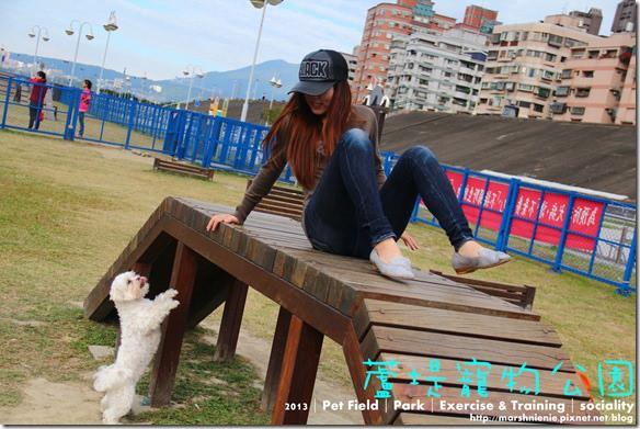 IMG_9864P37