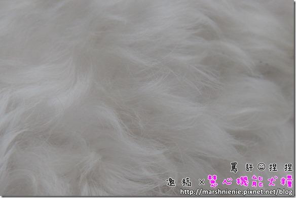 IMG_8171P01