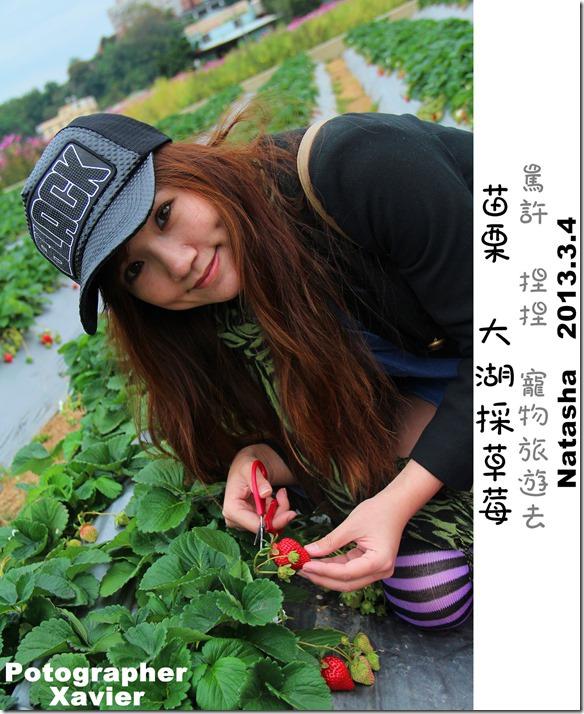IMG_3704P23